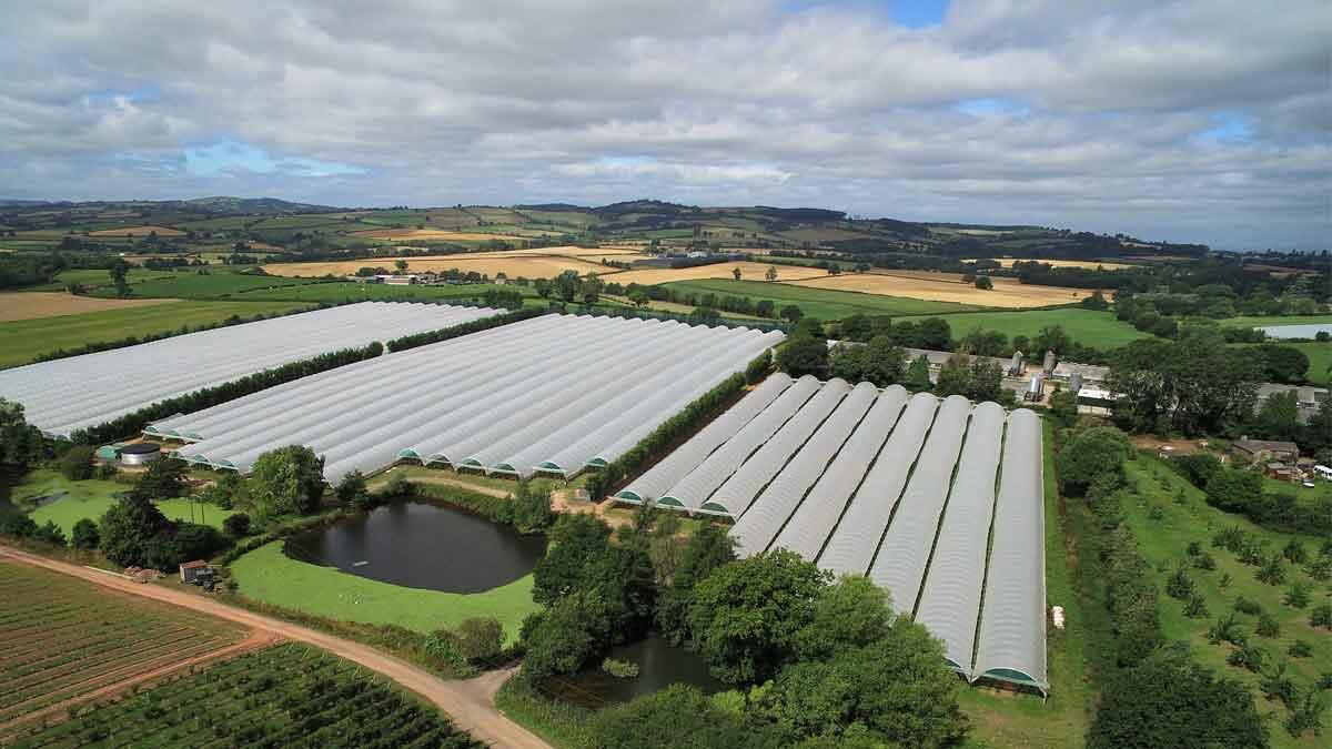 Aerial photo of Pencoyd Court Farm